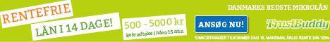 SEO Aalborg og software udvikling